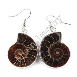 Wholesale Silver Ammonite - Different Half Natural Original Ammonite Conch Fossil Dangle Earrings Charms Silver Plated European Retro Jewelry Women Gift 10Pairs