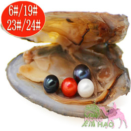 Wholesale Teardrop Pearls Beads - 4 Beads Natural Shell Beads 6-7mm Vacuum Packed Round Japanese Akoya Pearl Oyster 28 Colors Pearl Oyster Shell Wish Jewelry Gifts