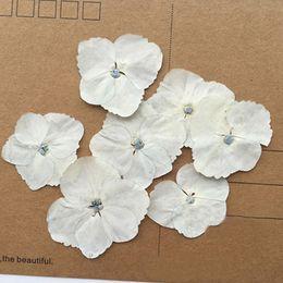 Wholesale Art Paintings Flowers - Hydrangea flowers Wedding Decoration Flowers Pendant For Home Art Painting And Teaching Raw Material wholesale 10 bags (120pcs)
