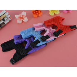 Wholesale Matching Chests - (30 Pieces lot) Hot Sale Soft Mesh Pet Dog Chest Strap Dog Harness Matching with The Same Color Leash Lead
