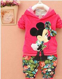 Wholesale Cartoon Sport Suit Children - Retail 2014 Spring Autumn baby girls Sport suit set cartoon long sleeve children hoodies sets hoodies+pant, 2 pcs clothing sets
