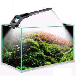 Argentina Fish Tank Lights SMD 220v / 50-60HZ Acuario LED Iluminación Led Acuario Lámpara de luz 1.1cm Impermeable Buceo Luces Suministro