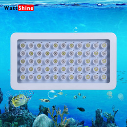 Wholesale Aquarium Bulb Square - New model Dimmable 165W LED Aquarium Light with 3W LED bulbs for Fish Tank Reef Coral, free shipping