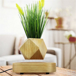 Wholesale Suspension Air - Wood Garden Decoration Flower Pots Plants In The Center Of The Air Suspension Bonsai Plants Floating Magnetic Suspension Flower