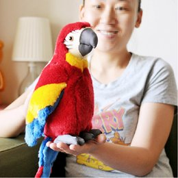 Wholesale Plush Parrot Stuffed Animals - Lovely parrot plush toy stuffed toy