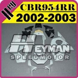 Wholesale Cbr Plastics - In Stock Heymanspeedmotor Unpainted(Unpolished) Fairings Injection Mold For Honda CBR954RR CBR 954 RR 2002 2003 02 03 H95H00