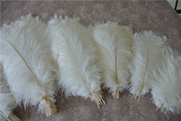 Wholesale Wholesale White Ostrich Feathers - Wholesale 100pcs White ostrich feather plume for wedding centerpiece Wedding decor PARTY EVENT Decor supply feative decor