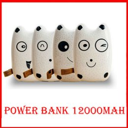 Wholesale Galaxy Note Backup Battery - Fashional Cute Totoro Mobile Power Bank 12000mah Battery Charger External Battery Backup for iphone Samsung Note Galaxy free shipping