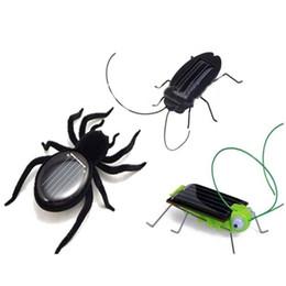 2019 pájaro volador de juguete al por mayor Al por mayor-energía solar energía educativa cucaracha araña saltamontes juguetes gadget Kid regalo
