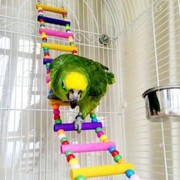 Il nuovo pappagallo dell'uccello dell'uccello di arrivo variopinto variopinto del pappagallo dei giocattoli dell'oscillazione del giocattolo della scala rampicante rifornisce 2017 Trasporto libero da