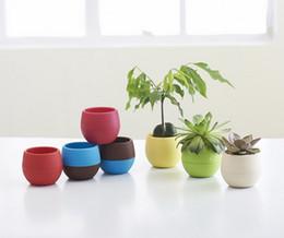 Wholesale Plastic Bonsai Pots - 7pcs lot desktop green plants Flower pots planters Home decoration plastic flower vases Mini pots new year bonsai wedding decorative pots