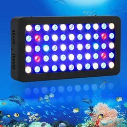 Wholesale Best Fishing Light - Best Quality Dimmable led aquarium light 165W Full Spectrum for marine Reef Coral fish tank SPS LPS stock in USA,Germany