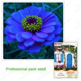 2019 fiori zinnia Classic Zinnia Elegans Flower Seeds Giovanili e vecchi 14 colori Zinnia 100 Seeds Particles / a Professional Pack sconti fiori zinnia
