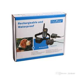 medidores Rebajas 300 metros de control remoto para mascotas collar de entrenamiento del perro recargable e impermeable con pantalla LCD Collar de entrenamiento 998DR 1 collar