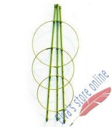 3pcs altura 45cm vides de plantas de metal recubierto de plástico apoya Clematis Morning Glory Lily Tomato pepino Sweet Pea, etc. Partidario desde fabricantes