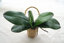 Wholesale Green Decorative Vases - Free shipping vivid real touch phalaenopsis leaf artificial plant leaf vase decorative flowers auxiliary material for flower decoration