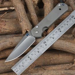 Wholesale D2 Sebenza - Wild boar Chris Reeve Large Sebenza 21 style Folding knife Tactical camping knives D2 blade TC4 titanium alloy handle EDC tools
