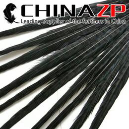 Argentina CHINAZP Crafts Factory 50 unids / lote 50 ~ 55 cm (20 ~ 22 pulgadas) Longitud seleccionada de calidad superior teñido negro Natural Ringneck plumas de faisán de la cola Suministro