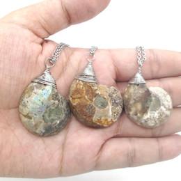 gioielli in pietra fossile Sconti JLN Ammonite Fossili Nautilus Ciondolo in pietra naturale Ocean Conch Ciondolo Collana in pietra per donna uomo