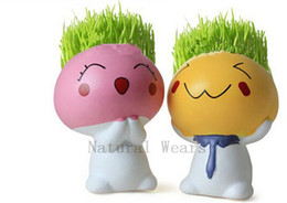 Wholesale Mushroom Seeds - 1 or 4 Mushrooms Boy Pot Moss Seeds Little Baby Doll Flowerpot Creative Garden Plant Vase Flowers Adornment Containers Potted