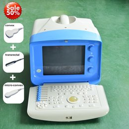 Wholesale Horse Machine - New! Veterinary Ultrasound machine vet handheld ultrasound scanner with any three probes  Dog Pig Sheep Cow Horse Pregnancy Test Ultrasound