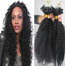 Wholesale Extension Human Hair Curly Micro - Hottest!!! Grade 6A Unprocessed Brazilian Kinky Curly Virgin Hair 100g 100S Micro Loop Human Hair Extensions Natural Black Hair