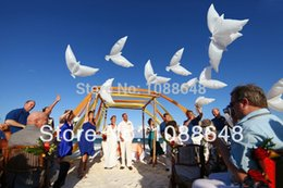 Wholesale Dove Balloons - Wholesale-Free shipping 10pcs lot 100% biodegradable inflatable white big Dove Balloons helium Pigeon balloon for wedding party decoration