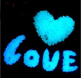Wholesale Wholesale Glow Dark Powder - Free Shipping 100g Bag Blue Luminous Sands glow in the Dark decoration garden ornaments Glowing Stone Sand powder for Wishing bottle