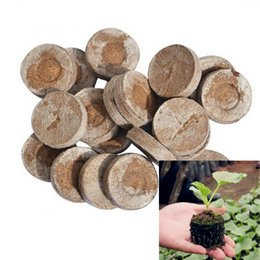Wholesale Packing Pallet - 30mm Jiffy Peat Pellets Seed Starting Plugs Seeds Starter Pallet Seedling Soil Block Professional 5pcs-pack Easy To Use