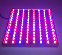 Wholesale Orchid Led - China Factory Offer 50W 55W LED Grow Light Square Panel 630nm 460nm 610nm 14000K for Commercial Lettuce, Orchids, Rose, Strawberry