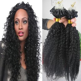 Wholesale Extension Human Hair Curly Micro - Mongolian Afro Kinky Curly Micro Loop Link Hair,10-30'' Kinky Curly Loop Micro Ring Human Hair Extensions,Deep Curly Remy Micro Beading Hair