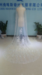 Wholesale Cheap Cathedral Veils Rhinestones - Real Image One Layer Three Meters Long Bridal Veils Lace Sequined Appliqued Edge Cathedral Tulle Cheap Crystals Beads Wedding Veil With Comb