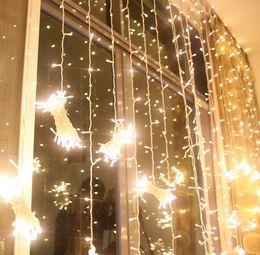 Background Curtains Lights NZ