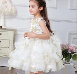 2019 органза костюм Белый органза принцесса платье костюмы дети платье девушки день рождения девушки цветка платья платья 2015 дешевые девушки цветка платье свадьба