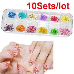Flores secas uñas al por mayor online-Venta al por mayor-10Sets / Lot 12 colores Real Dry Dry Flower Nail Art Tips Decoración DIY Envío Gratis