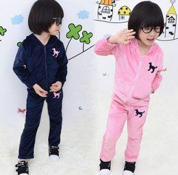 Wholesale Embroidered Hoodie Kids - Free UPS 2016 New pink dark blue girls velvet tracksuit baby girl jogging suit kids velvet hoodie pants suit set Girl embroidered tracksuits