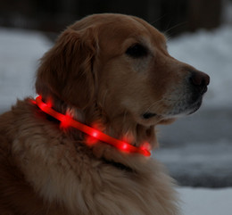 Wholesale Rechargeable Lighted Dog Collars - USB Rechargeable LED Dog Collar Waterproof Light-Up Night Safety Neck Loop Fashing Tube Band Grow in the Dark