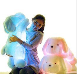 Wholesale Led Dog Toys - 50cm Colorful LED Flash Light cute dog Doll Plush Stuffed Toys dog Gift For Children Christmas Gift Stuffed & Plush toy
