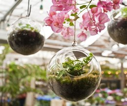 Wholesale Glass Candle Hanging - 3PCS set hanging glass orb terrariums,indoor plant hanging pots,candle holders for wedding decor,garden ornaments,gifts for friends