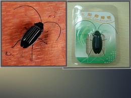 Usine en gros chaud solaire jouet insecte cafard éducatif / jouet intellectuel Enfants article de promotion de cadeau d'anniversaire 300pcs / lot 056 ? partir de fabricateur