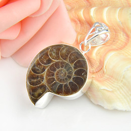 Wholesale Silver Ammonite - Pure Handmade Top Quality Luckyshine 5pcs Lot Hot Sale Natural Ammonite Fossil Gemstone 925 Silver Pendant American Weddings Jewelry Gift