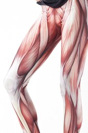 Wholesale Milk Silk Leggings - THE RENAISSANCE New Arrival! Women Sexy Universe Galaxy Printed Muscle leggings for girl Milk Silk