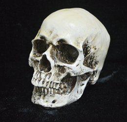 Wholesale Wholesale Medical Face Mask - Human Skull Replica Resin Model Medical Realistic NEW Party Masks skeleton Collection Handicraft terror fine arts TY932