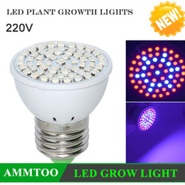 Wholesale Grow Wholesale - Wholesale-New Arrive Full Spectrum LED Grow Light E27 60LED 40Red + 20Blue 220V LED Growing Lamp for Flower Plant Hydroponics System &