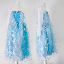Wholesale Silk Short Sleeve Gown - New Elsa dress costumes long sleeve skirt Princess Elsa party wear clothing Elsa & Anna dress(1701012)