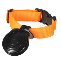 Wholesale Dog Collar Recorder - Cam Camera Video Recorder Monitor Collars For Pets Dogs Cats Puppy Black Pet Smart Supplies