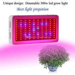 Wholesale Plant Lights For Sale - Hot sale Dimmable led grow light 300W full spectrum hydroponic lamp panel for grow tent indoor greenhouse plant veg cultivation & fruiting