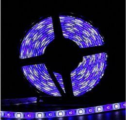 Wholesale Pretty Decorations - 300led smd 5050 RGBW led strip RGB+W led Strip Light Flexible 12v 60led m rgb led strip 5050 very beautiful pretty amazing