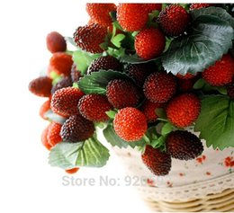 Wholesale Raspberry Decorations - Free Shipping 2015 new fruit decoration flower artificial raspberry fruit paddle strawberry photo props Artificial plant
