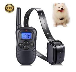 Wholesale Collare per addestramento cani per cani di taglia piccola di media taglia iarde Collari in PU ricaricabili remoti e antipioggia Pet Traning